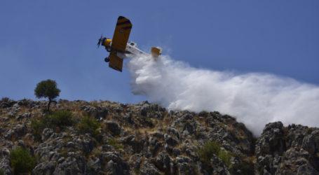 Υπό έλεγχο η φωτιά σε Ραφήνα – Διακοπή κυκλοφορίας στη Λεωφόρο Μαραθώνος – Οι πρώτες εικόνες
